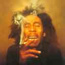 Jamaicalove